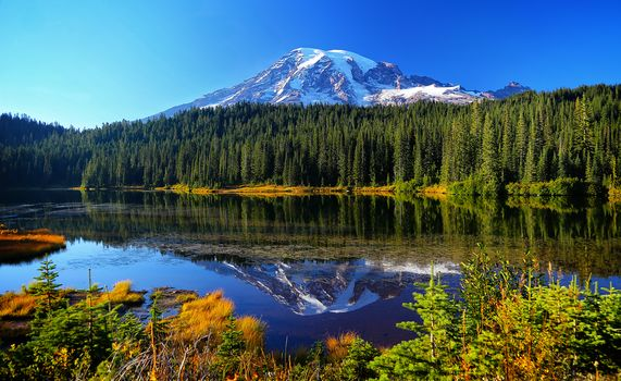 Mount Rainier National Park, Reflection Lake, lake, Mountains, trees, landscape
