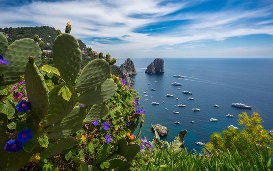 Gardens of Augustus, Capri, Tyrrhenian Sea, Italy, Gardens of Augustus, Capri, Tyrrhenian Sea, Italy, sea, coast, Rocks, Yacht, cactus, Flowers, panorama