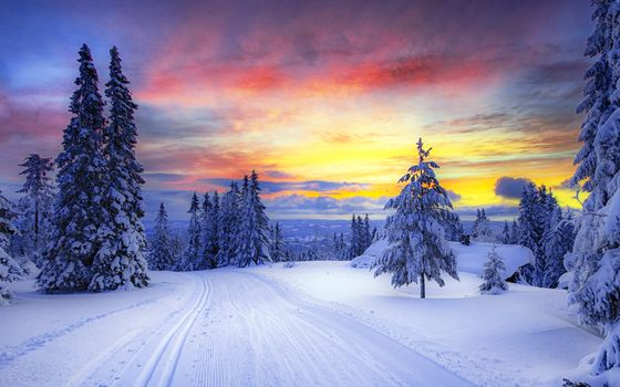 norway, winter, forest, snow, Trees Wallpaper, Background Ultra HD, sunset, winter, road, snow, trees, landscape