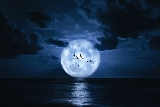 sea, night, moon, clouds, flock of birds, landscape