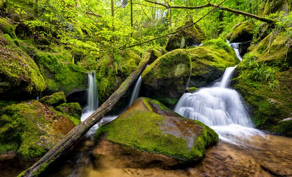 Gertelbach, Black Forest, Germany, forest, trees, small river, waterfall, stones, nature