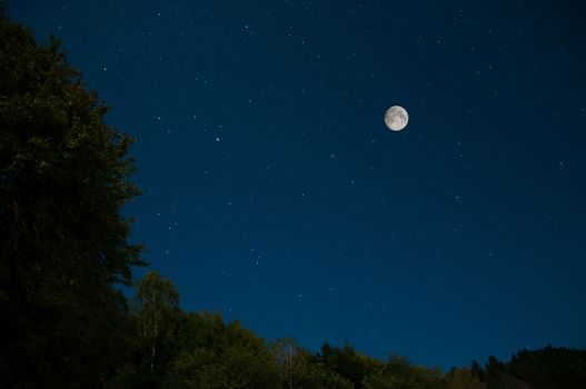 Star, moon, sky, nature, landscape, night, forest, trees, space, land