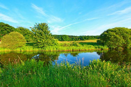 river, summer, trees, landscape