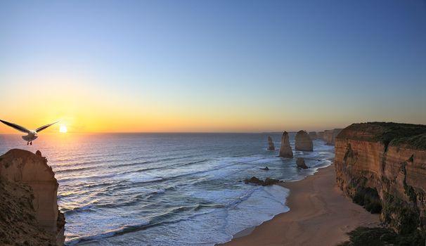 закат, море, скалы, берег, чайка, пейзаж