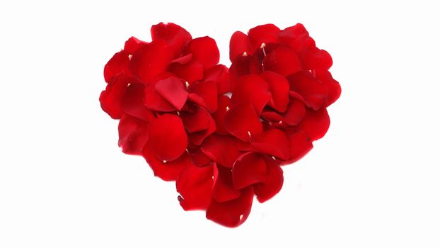 holiday, Valentine, heart, Petals, Flowers
