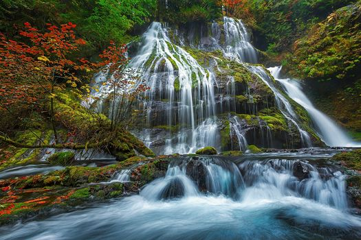 Panther Creek Falls, Gifford Pinchot National Forest, forest, trees, waterfall, nature