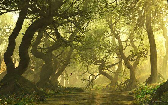 рендеринг от Kisenok, рендеринг, пейзаж, лес, лучи