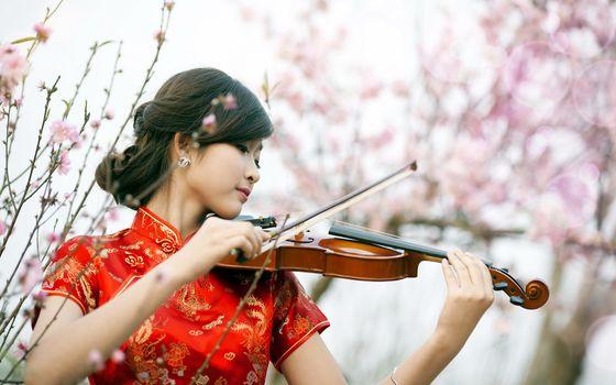 Азиатские скрипачки (30 шт)