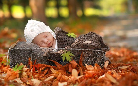 Сон младенца-2 (30 шт)