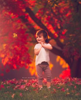 Kisenok taxis, children, baby, baby, kids, autumn