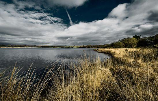 Kisenok рулит, водоем, река, пруд, берег, заросли, облака, небо, пейзаж
