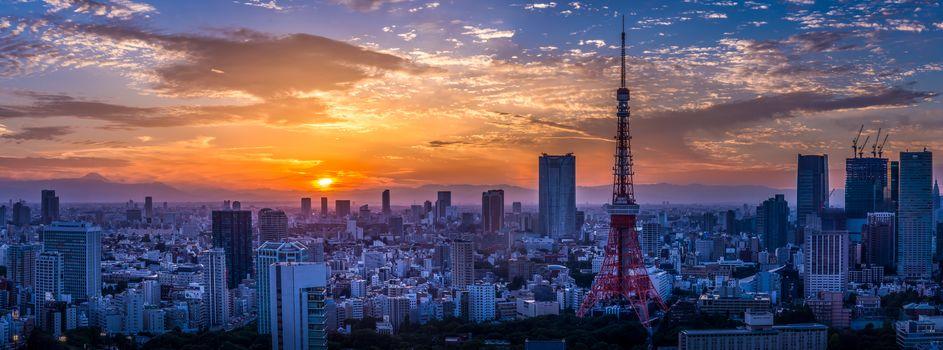Токио, Япония, Tokyo, JAPAN, город, ночь, иллюминация, панорама