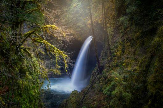 enchanted world, Enchanted World, Waterfall, Eagle Creek Canyon, Oregon, USA