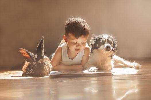 boy, rabbit, dog, friends, booklet, reading