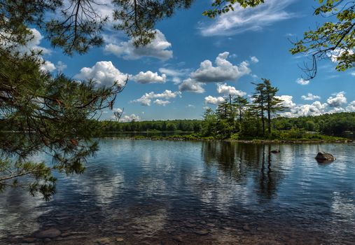 lake, Island, forest, trees, branches, clouds