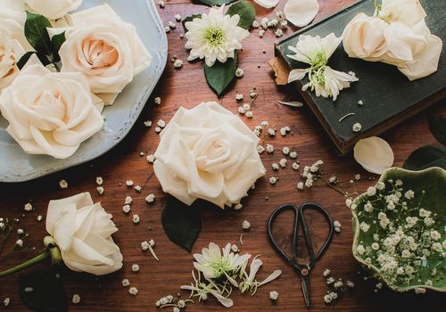 roses, buds, gypsophila, petals, scissors, book, still life, style