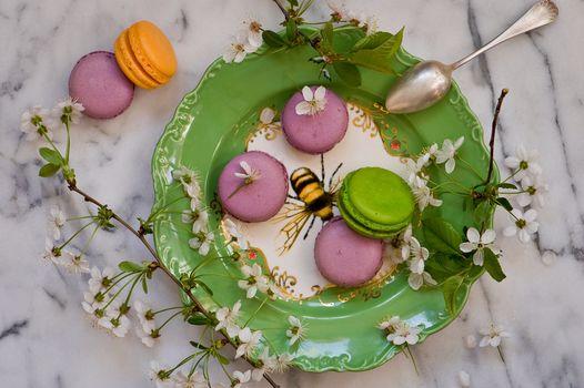 макарон, тарелка, веточки