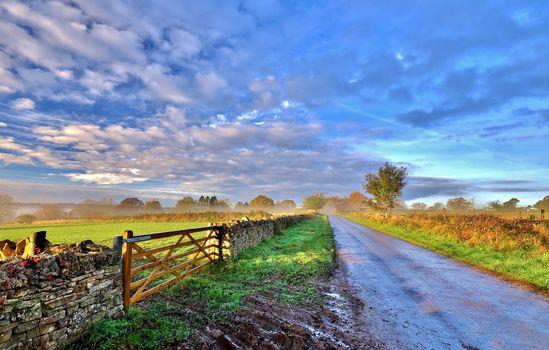 Котсволдс, Глостершир, Великобритания, поля, дорога, деревья, туман, утро, пейзаж