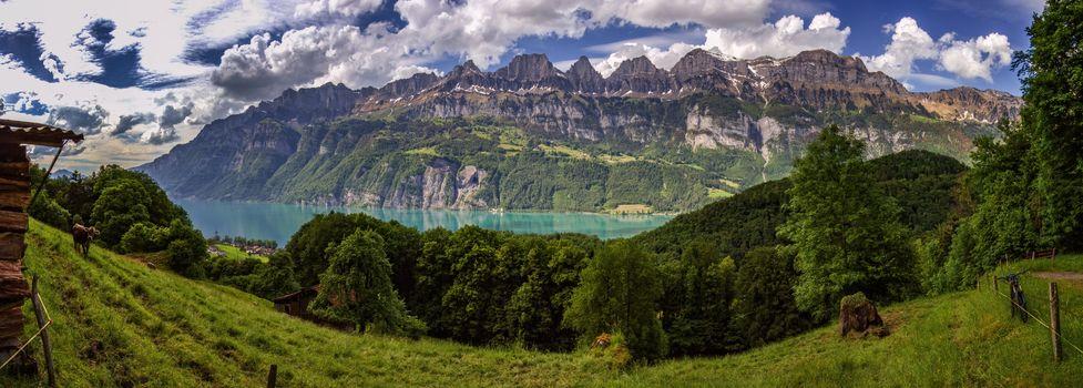 Walensee, Озеро Walen, Альпы, Швейцария, озеро Валензе, Альпы, Швейцария, озеро, горы, луг, деревья, вид