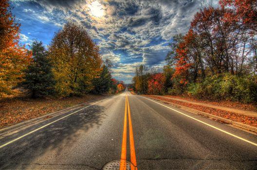 Williston Road, Minnetonka, Minnesota, autumn, road, trees, landscape