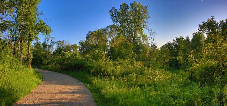 Minnesota, Purgatory Park, field, road, trees, landscape, view