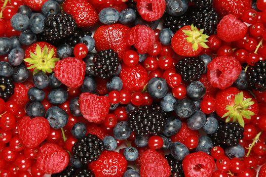 ягоды, клубника, малина, ежевика, голубика, смородина