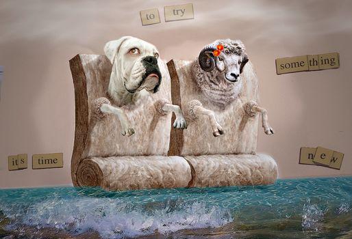 Fakemanipulation, fotomanypulyatsyya, art, photoshop, dog, ram