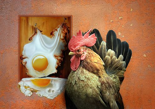 Fakemanipulation, fotomanypulyatsyya, art, photoshop, cock, scrambled eggs