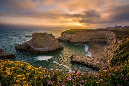 Акульих плавников Cove, Санта-Крус, Калифорния, Тихий океан, Santa Cruz, Калифорния, Тихий океан, бухта, закат, скалы, цветы, побережье