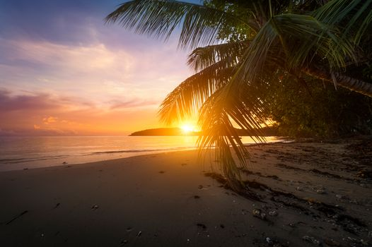 Anse Boileau, Mahe Island, Seychelles, Indian Ocean, Anse Boileau, Mahe island, Seychelles, Indian Ocean, ocean, sunset, beach, palm trees