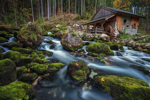 Golling an der Salzach, Salzburg, Austria, Schwarzbach Creek, Golling-an-der-Zalytsah, Salzburg, Austria, brook Schwarzbach, water Mill, mill, forest, Creek, stones, moss