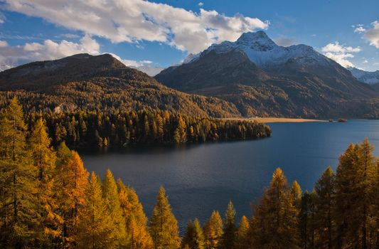 Lake Sils, Sils im Engadin, Switzerland, Alps, lake Sils, Zilys-their-Эngadin, Switzerland, Alps, lake, the mountains, forest, trees, autumn