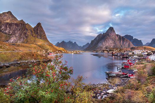 Лофотенские острова Норвегии, Лофотенские, Норвегия, горы, водоём, деревья, дома, пейзаж
