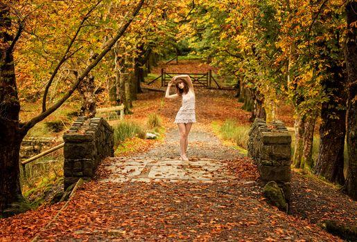 autumn, park, bridge, trees, girl, landscape