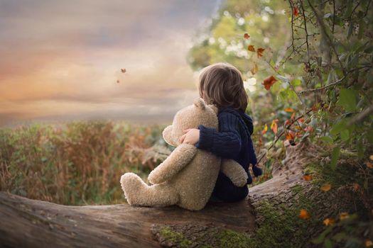 boy, child, teddy bear, bear, a toy, log, autumn, nature
