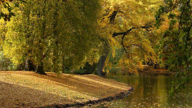 Георгенгартен, Ганновер, Нижняя Саксония, Германия, Река Лейне, Георгенгартен, Ганновер, Нижняя Саксония, Германия, река Лайне, осень, парк, река, деревья, листья