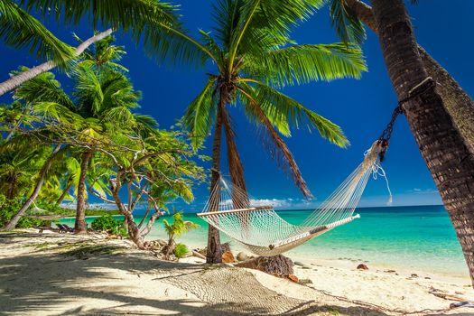 Island, sea, ocean, Coast, beach, palm trees, hammock, landscape