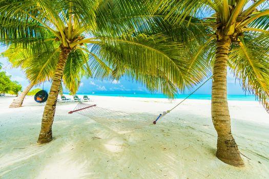Island, sea, ocean, Coast, beach, palm trees, landscape, Maldives island
