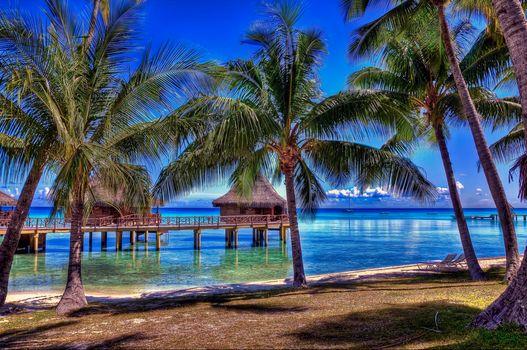 Ранжироа, Французская Полинезия, Французская Полинезия, океан, пальмы, бунгало.пляж, пейзаж