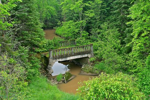 anderson creek bridge, tarbutt township, Ontario, forest, trees, River, bridge, nature