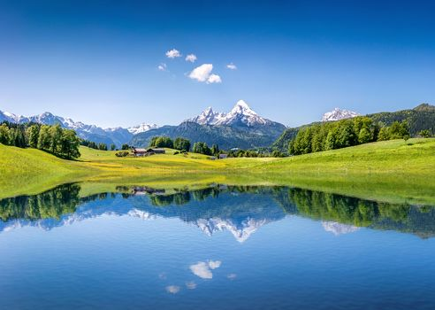 lake, the mountains, at home, fields, trees, landscape