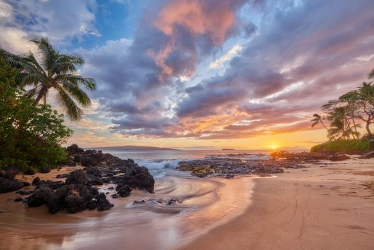 sunset, sea, palm trees, Coast, beach, landscape