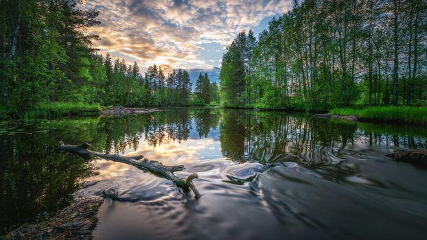 sunset, River, trees, landscape