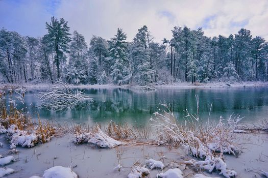lake, forest, trees, winter, landscape, Missouri