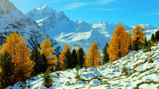 Grisons, Switzerland, the mountains, trees, autumn, landscape