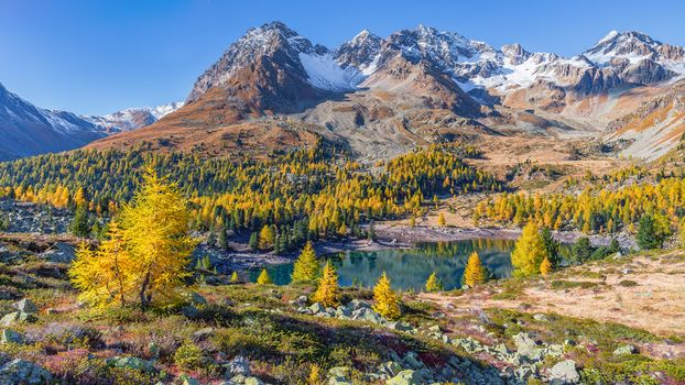 Grisons, Switzerland, view, autumn, the mountains, lake, trees, landscape