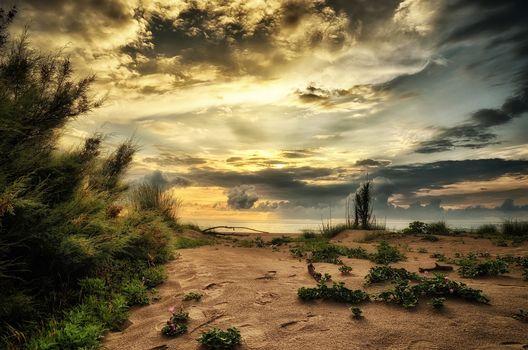 Italy, Adriatic Sea, Venetia, sky, sea, reflux, beach, dunes, harmony, seascape, coast, sunset