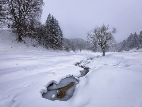 Dambu Morii, Romania, Southern Carpathians, winter, snow, small river, trees, landscape