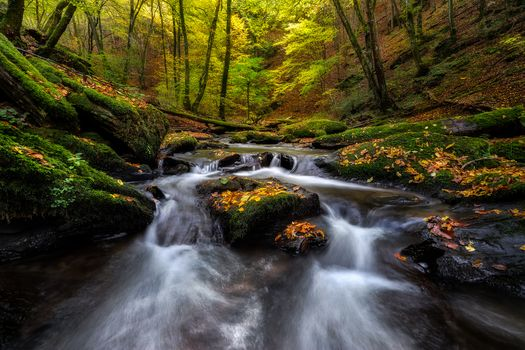 autumn, River, waterfall, forest, trees, landscape