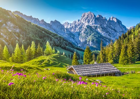 Alps, Switzerland, the mountains, hills, trees, lodge, landscape